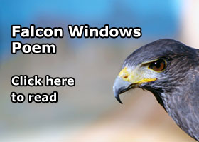 Falcon Windows Poem